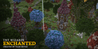 Enchanted (TNT Wizards)