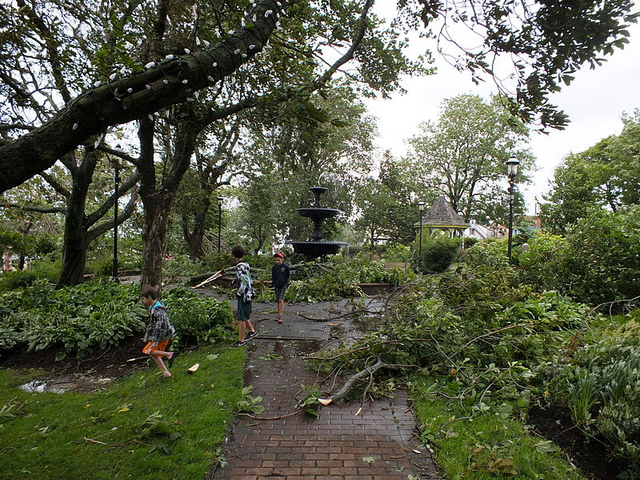 File:Hurricane Arthur aftermath in Frost Park.png