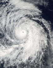 Hurricane fausto 2002 August 24