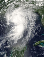 Hurricane Cindy 2005-07-05.jpg