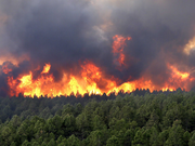 Wildfire-colorado-springs