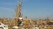 17 November 2013 Washington tornado damage 2