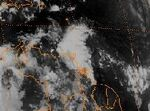 Tropical Storm Fran (1990).jpg