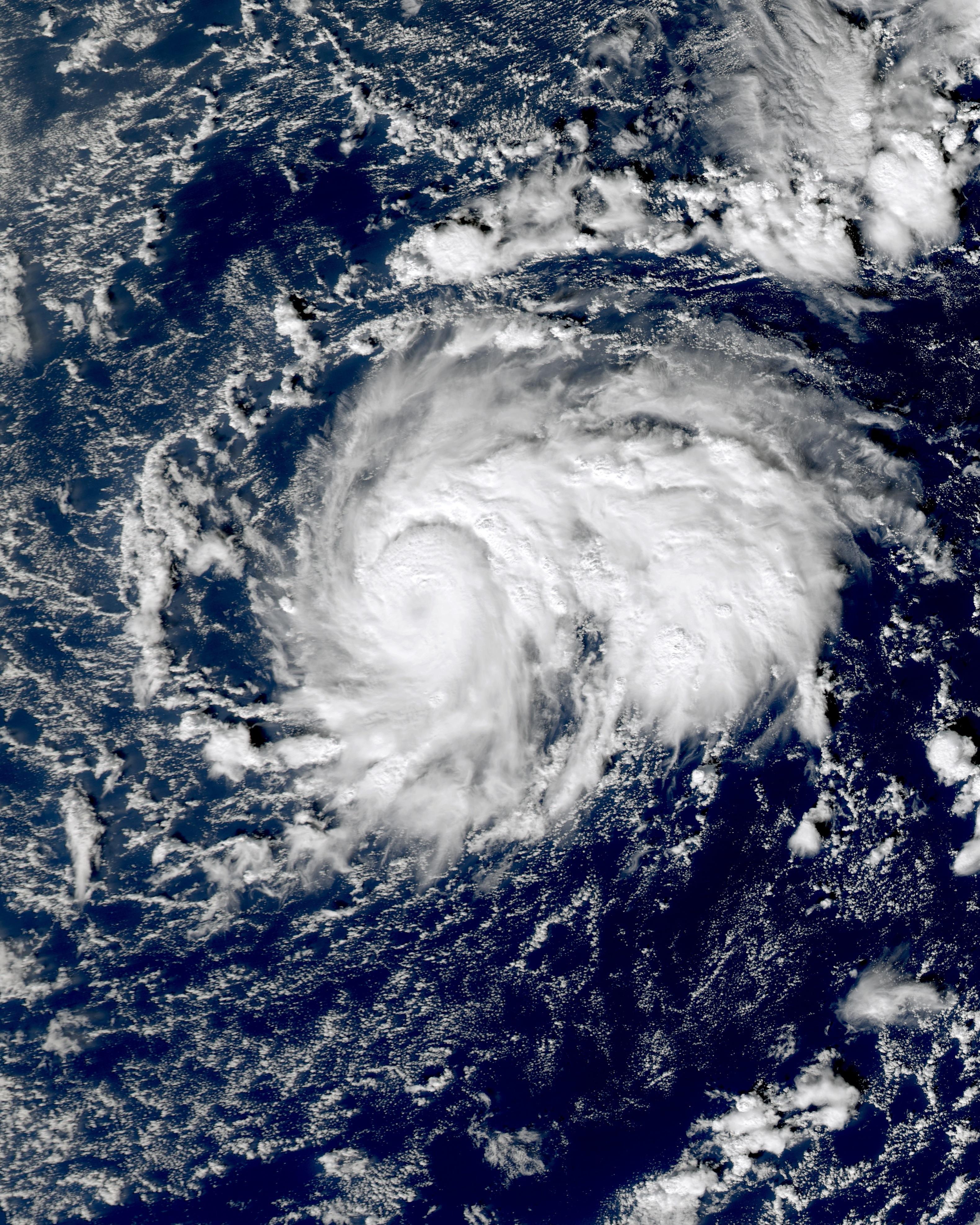 Omeka 2010-12-19 0057Z.jpg