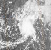 File:Tropical Storm Hali (1992).JPG
