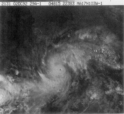File:Hurricane Virgil (1992).JPG