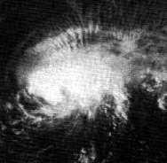 File:Tropical Storm Selma (1970).JPG