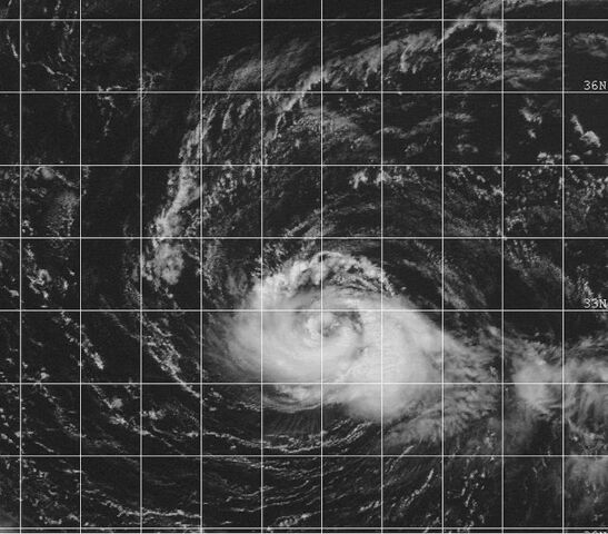 File:Typhoon Tanya 1999.jpg