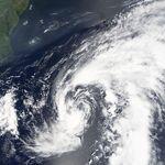 Tropical Storm Harvey 04 aug 2005.jpg