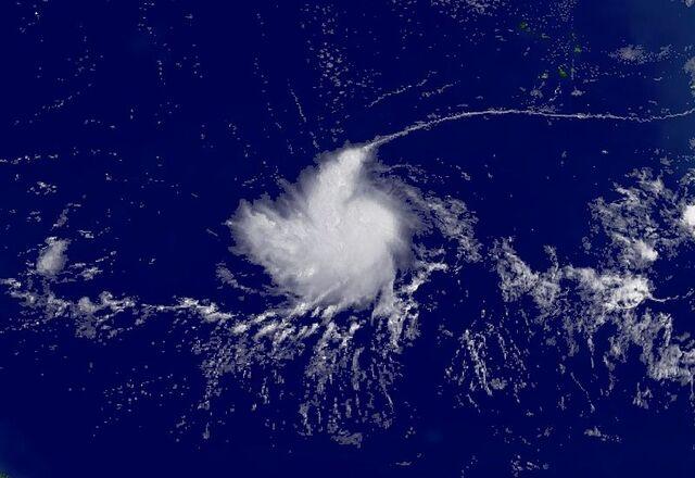 File:Tropicalivan04.JPG