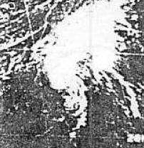 File:Hurricane Holly of 1976.JPG