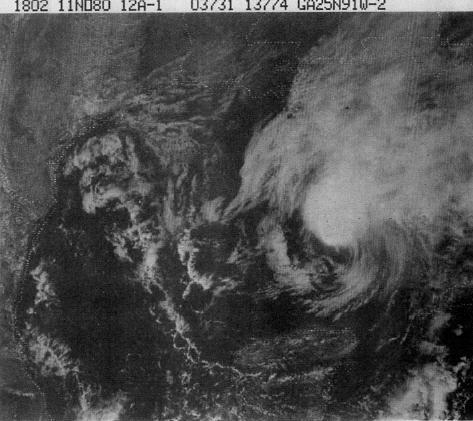 File:Hurricane Jeanne (1980).JPG