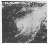 Hurricane Alberto (1982)