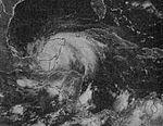 File:Tropical Storm Hermine (1980).jpg