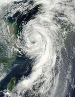 Tropical Storm Dianmu August 10,2010.jpg