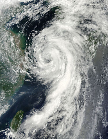 File:Tropical Storm Dianmu August 10,2010.jpg