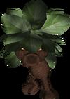 Forest scrub-0