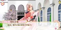 Toya Honoki/Affection Story