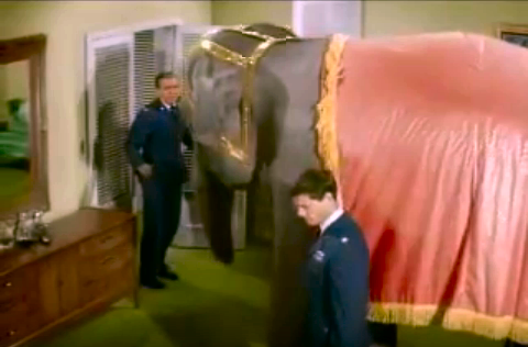 File:IDOJ episode 1x24 - The Permanent House Guest - Tony's Pachyderm.png