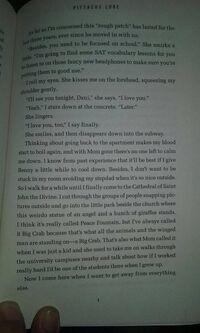 Excerpt5