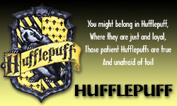 File:Hufflepuff Banner.jpg