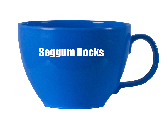 File:Seggyscup.png