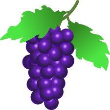 File:Grape.jpg