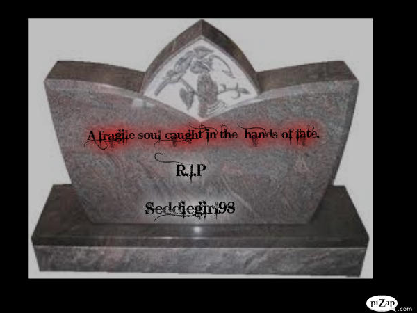 File:Seddiegirl Memorial 3.png