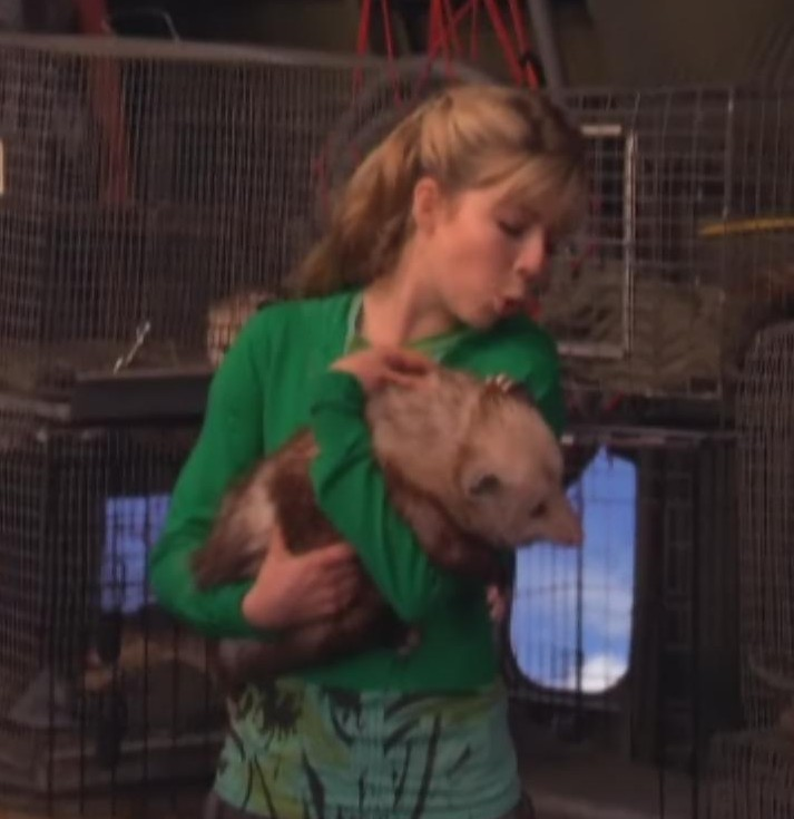 Image - Sam with Possum.jpg | iCarly Wiki | Fandom powered by Wikia