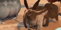 Aardvark Dad