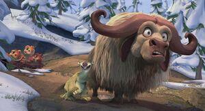 Sid musk ox