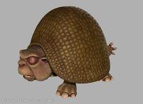 Glyptodon (8)