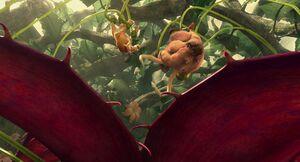 IA3 carnivorousplant-9