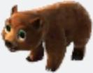 BabyGrizzlyBear