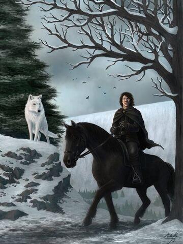 File:SciFi.Fantasy.ASoIaF-Jon-Snow.ASoIaF-signed.jpg.rZd.471469.jpg