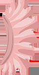 File:Tutu pink.png