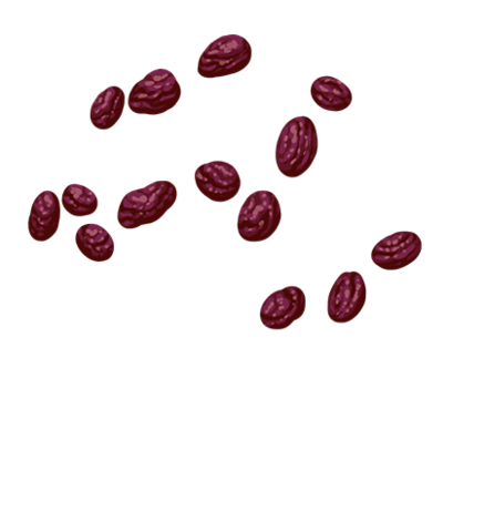 File:Raisins.png