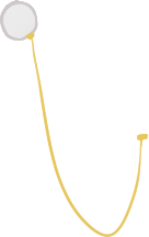 File:Accessory monocle.png