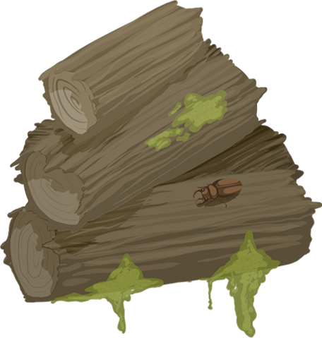 File:Wood thumb.png