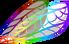 Wings rainbow