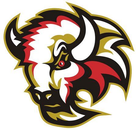 File:LogoBasingstokeBison.jpg