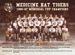 1986-87MHTigers