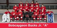 2010-11 GMJHL Season