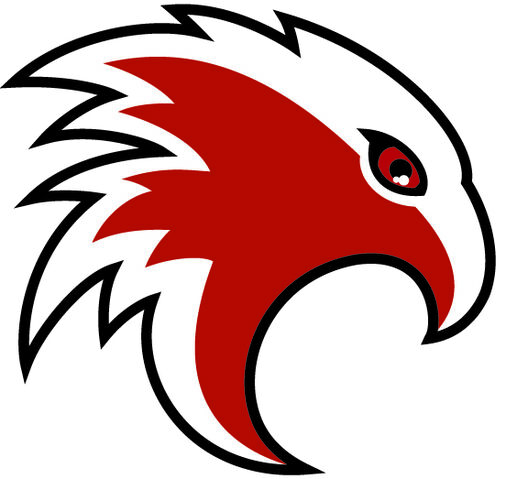 File:Cambridge Winter Hawks.JPG