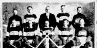 1930-31 United States National Senior Championship