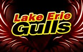 Lake Erie Gulls logo