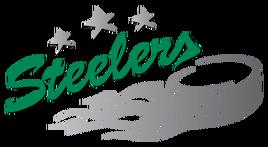 400px-Bietigheim Steelers logo