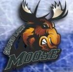 Grand Lake Moose logo