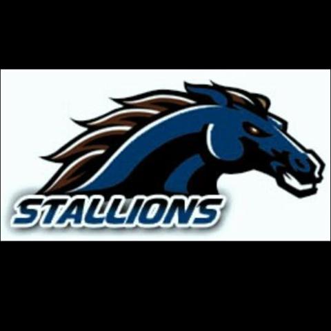 File:Montague Stallions.png