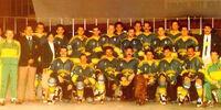 1989 World Championship